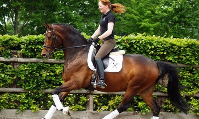 New York Dressage - Warwick: $60 for Two Private One-Hour Horseback-Riding Lessons for Adults or Children at New York Dressage ($120 Value)