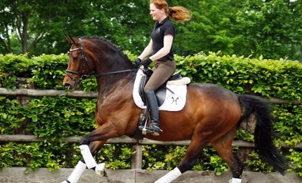 $60 for Two Private One-Hour Horseback-Riding Lessons for Adults or Children at New York Dressage ($120 Value)