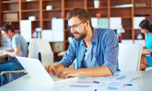 Live Online Academy: C$19 for an Online Microsoft Excel Diploma Program with Live Online Academy (C$395 Value)