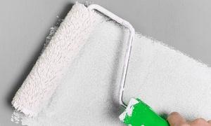 Barreca Giovanni: Imbiancatura per 30, 50, 70, 100 o 120 m² calpestabili, soffitto incluso (sconto fino a 87%)