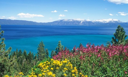Reno: One-Night Stay at Alpenrose Inn in South Lake Tahoe, CA