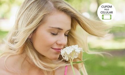 Pink and Blue Fashion Hair – Santo André: botox ou reconstrução capilar + escova (opção de corte e design sobrancelha)