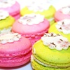 Up to 49% Off Macarons, Mini Cupcakes, or Both at Sugartiers