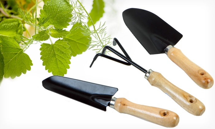 ThinkTank Technology Garden Set: $10.99 for a ThinkTank Technology Three-Piece Garden Tool Set ($19.99 List Price). Free Returns.