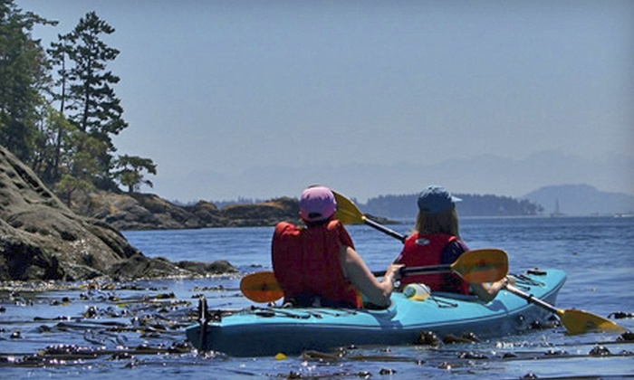 A Paddle in the Park Kayaking - Sidney: Two- or Four-Hour Guided Kayak Tour for One or Two from A Paddle in the Park Kayaking (Up to 54% Off)