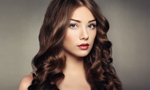 Casalerno Salon: Women's Haircut with Optional Color or Highlights, or Three Men's Haircuts at Casalerno Salon (Up to 56% Off)