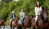Connect and Ride - Victoria: Two- or Four-Hour Horseback Trail Ride for One at Connect and Ride (Up to 50% Off)