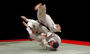Kozma Brazilian Jiu-Jitsu and MMA: BrazilianJiu-Jitsuand Boxing Classes at Kozma Brazilian Jiu-Jitsu and MMA (Up to 58% Off). Three Options Available.