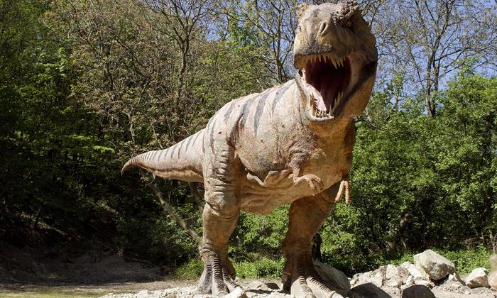 Vip Tickets Dinosaurier Live Vip Tickets Für Dinosaurier Im