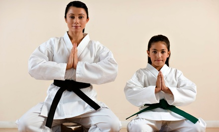 One Month of Tae Kwon Do Classes, or One or Three Months of Kickboxing Classes at Kees Tae Kwon Do(Up to 65% Off)