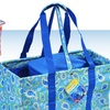 Sachi Utility Tote with Detachable Insulated Cooler
