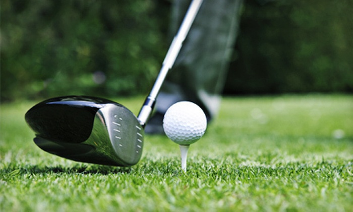 The Steve WenPetren Golf Academy - Dranesville: Private Golf Lessons at The Steve WenPetren Golf Academy in Herndon (Up to 62% Off). Three Options Available.