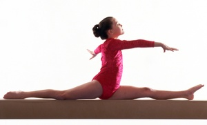 Beaches Gymnastics: $20 for $40 Groupon — Beaches Gymnastics
