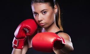 Kickboxing Farmingdale: 5 or 10 Kickboxing Classes at Kickboxing Farmingdale (Up to 87% Off)