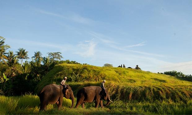 Bali: Admission to Bali Zoo 2