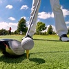 Up to 49% Off at The Falcon Golf Course