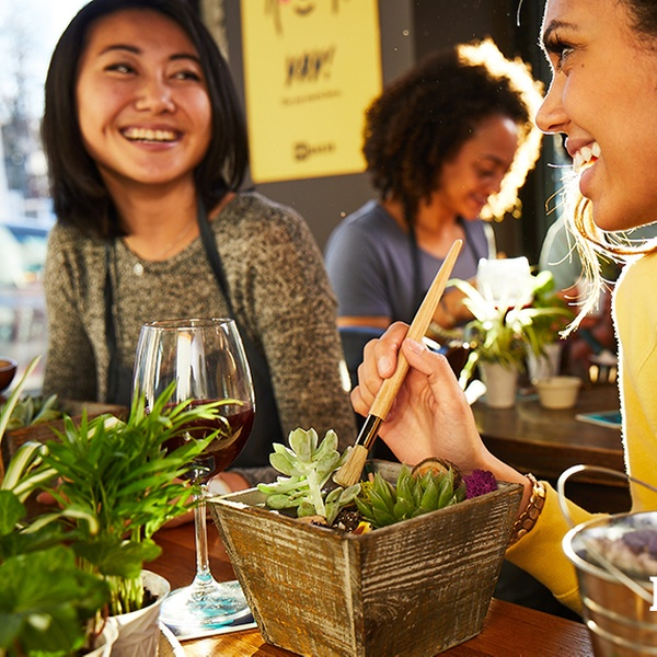 Plant Nite Canada By Yaymaker Up To 29 Off Ottawa Groupon