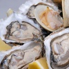 Up to Half Off at Murphys Oyster Bar