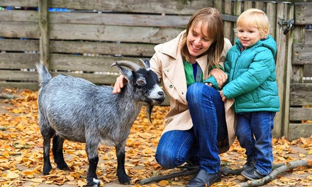 Dairy-Farm Tour for Two, Four, or Six at Noble Springs Dairy (Up to 56% Off)