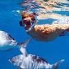 Half Off Snorkel or Snuba Tour in Destin