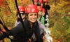North Georgia Canopy Tours, LLC - North Georgia Canopy Tours: Sky Bridge Ziplining Tour for One or Four from North Georgia Canopy Tours (Up to 55% Off)