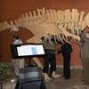 Alaska Museum of Natural History – Half Off Visit