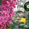 $9 for a Visit to Longwood Gardens