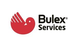 Bulex Services: Entretien chaudière au gaz Bulex à 89,99€ avec Bulex Services