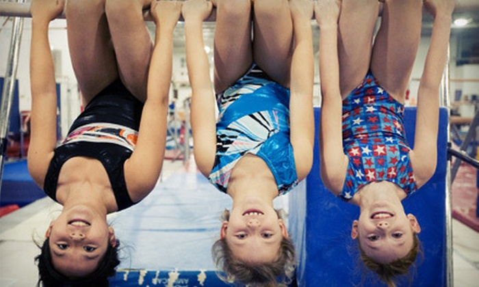 Flying High Sports & Rec Center - Countryside: Kids' Gym Sessions or 6-Week Gymnastics Package at Flying High Sports & Rec Center (Up to 83% Off). 3 Options Available.