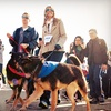 PAWS Chicago – Up to 53% Off Race Entry