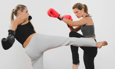 10, 20, or 30 Drop-In Kickboxing Classes with Gloves at Baltimore Martial Arts Academy (Up to 92% Off)