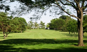 Cedar Pointe Golf Course: Golf Outing with Cart for Two or Four at Cedar Pointe Golf Course (Up to 52% Off)