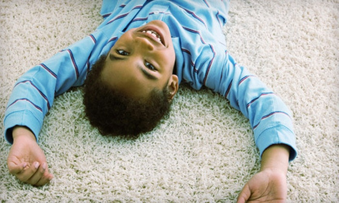 Eco-Clean Carpet and Upholstery Care - Seattle: Three, Six, or Nine Rooms of Dry Carpet Cleaning from Eco-Clean Carpet and Upholstery Care (Up to 64% Off)
