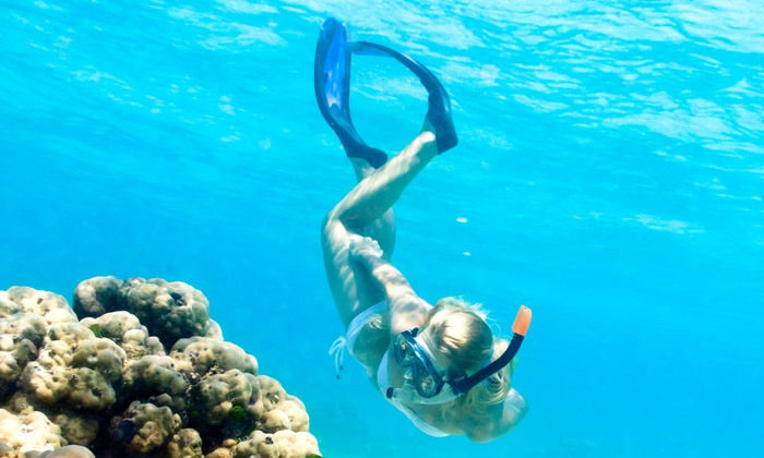 Hawaiian Diving Adventures, LLC - Ala Moana - Kakaako: Guided Snorkeling Tour for One or Two from Hawaiian Diving Adventures, LLC (Up to 58% Off)