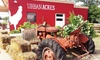 40% Off Groceries and Farm-to-Table Cuisine at Urban Acres