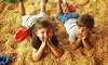 Christian Way Farm, LLC - Hopkinsville: 18 Holes of Mini Golf and Petting-Farm Admission for Two, Four, or Six at Christian Way Farm, LLC (Up to 55% Off)