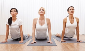 AOA Fitness, LLC: 10 or 20 One-Hour Yoga Classes at AOA Fitness, LLC (Up to 71% Off)
