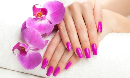 OPI Gel Manicure Packages at The Nail Diva At Salon 213 (Up to 50% Off). Two Options Available.
