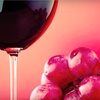 Half Off Wine Tasting at MJA Vineyards
