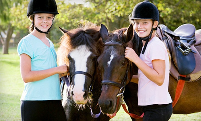 Haverhill Farms - White Lake: $35 for Two Private Lessons or One 30-Minute Horseback-Riding Lesson for Two at Haverhill Farms in White Lake ($70 Value)