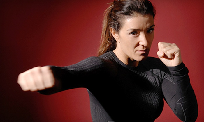 American Academy of Self Defense - The American Academy of Self Defense: 5 or 10 Classes and One Personal-Training Session at American Academy of Self Defense (Up to 84% Off)