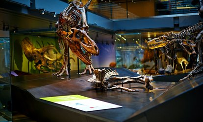 Natural History Museum Of Los Angeles County Coupons