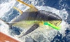 Watch Hill Outfitters - Montauk: $15 for $30 Worth of Fishing Gear and Services at Watch Hill Outfitters in Westerly