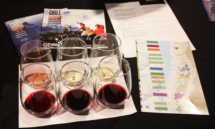 Puro Chile - New York: Chilean Wine Class with Tasting for One, Two, or Four at Puro Chile (Up to 54% Off)