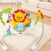 Fisher-Price Jumperoo Rainforest Friends