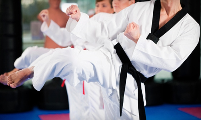 American Dojo - Multiple Locations: 8 or 16 Martial-Arts or Kickboxing Classes for 1, or 1 Month of Classes for Family of 4 at American Dojo (Up to 84% Off)