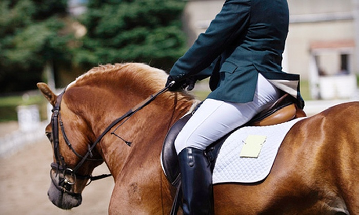 Edinger Farm - Rehoboth: Three or Five Private Horseback-Riding Lessons at Edinger Farm (Up to 55% Off)