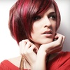Up to Half Off Haircut in Shelby Township