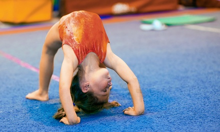 One Month of Boys, Girls, or Mighty Munchkin Gymnastics Classes at Eagles Gymnastics, A Kid's Activity Center