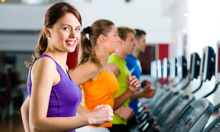 One- or Three-Month Gym Membership with Unlimited Classes at Agoura Fitness (Up to 61% Off)